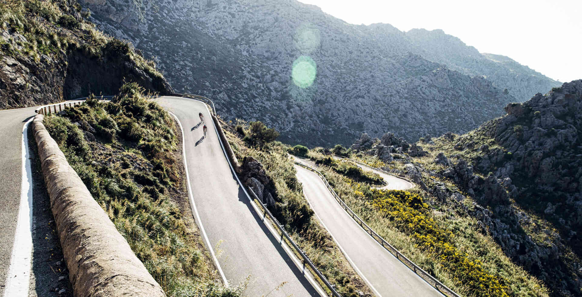 Trek Road Lifestyle